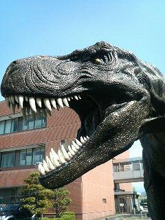 ミフネ化石広場